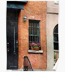 Chelsea Windowbox Poster