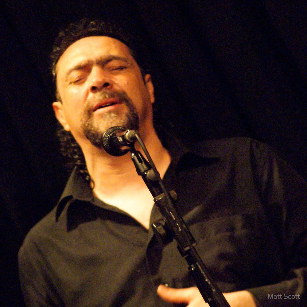 Flamenco #1 by Matt Scott