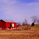 Red Barn in the Shenandoah Valley by Debbie Robbins