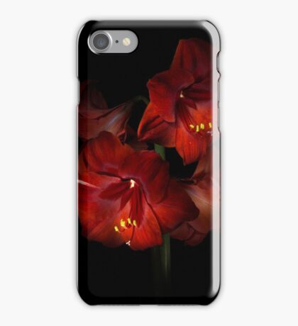 Scarlet Amaryllis iPhone Case/Skin