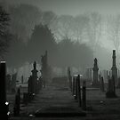 Stillness by Daniel Yates