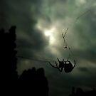 Impending Equinox by Daniel Yates