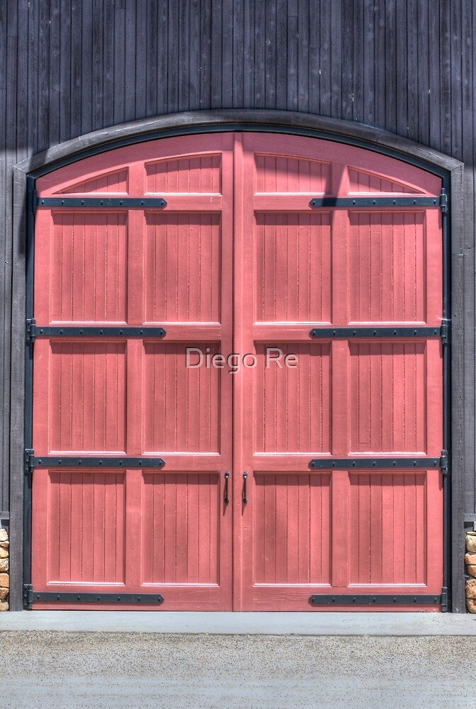 A Great Door by Diego Re