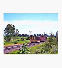 Spur Tracks Photographic Print