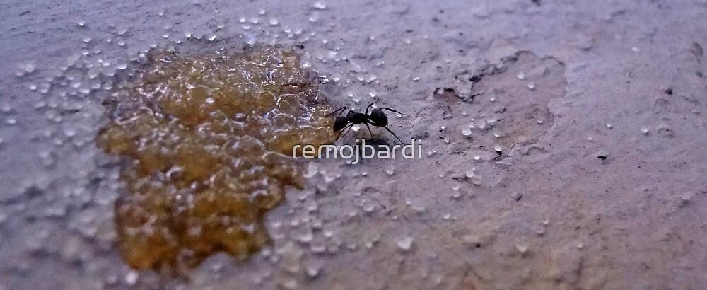 Small Life..Big World 3 by remojbardi