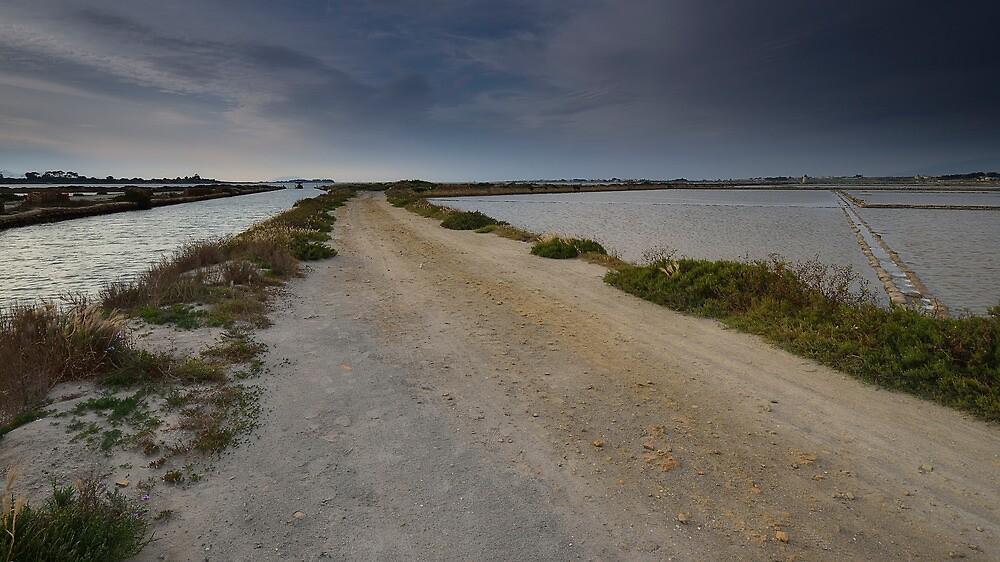 La strada che porta alle saline by Andrea Rapisarda