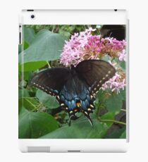 Black Eastern Swallowtail - Summer's End iPad Case/Skin