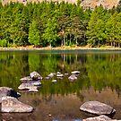 Still Waters - Blea Tarn by Trevor Kersley