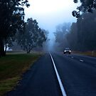 0148 Early one morning by DavidsArt