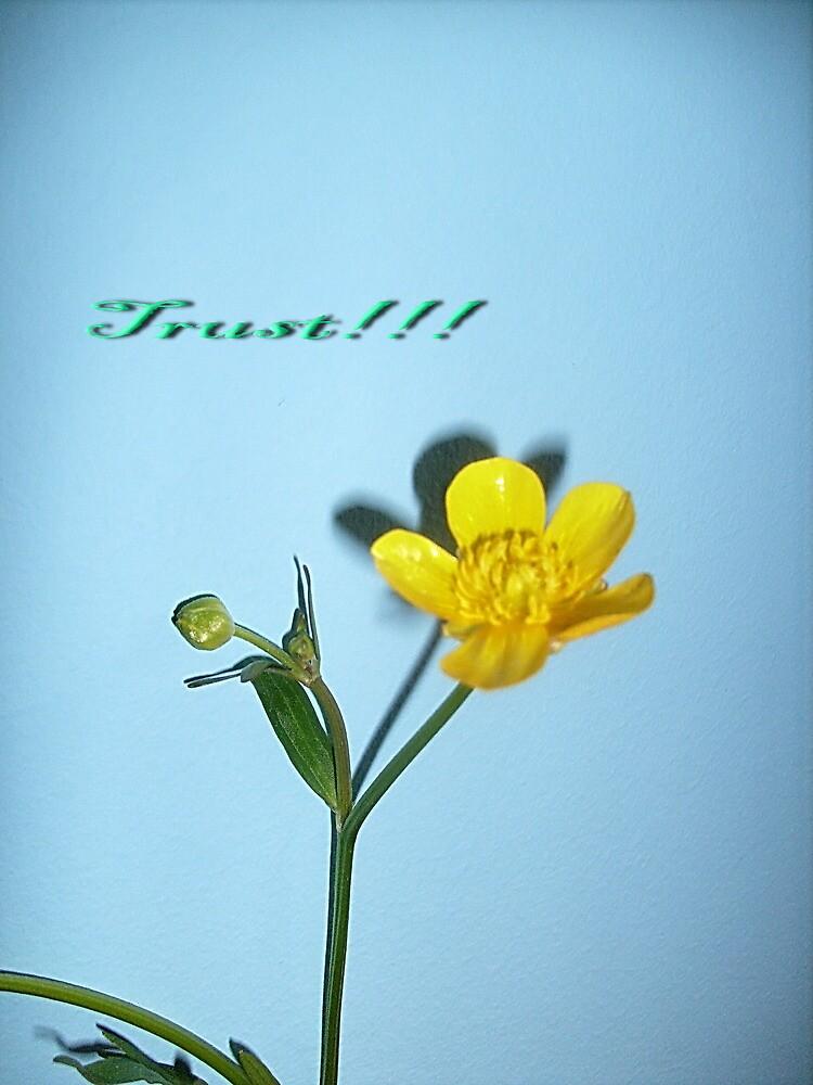 Trust!!! by Ana Belaj
