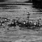 Make A Splash by Suzy Fitzharris