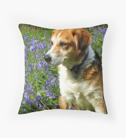 Benjie in the Bluebells Throw Pillow