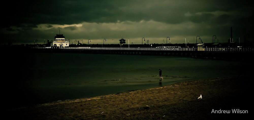 St Kilda Pier 2 by Andrew Wilson