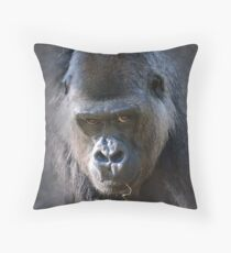Here's Looking at You Kid.... Throw Pillow