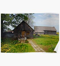 Spring in old farmstead (My grandfather houseyard) Poster