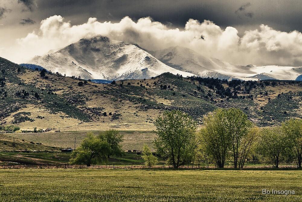 Longs Peak Hangin  by Bo Insogna
