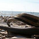 Beach Find by ArtBee