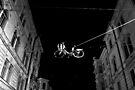 Bicycle On A Wire by Mojca Savicki