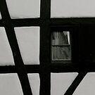 in the window by anisja