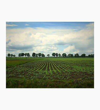 Landscape  Hunzedal Photographic Print