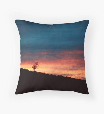 fervent hours, stolen delights Throw Pillow