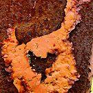 Rusty Chicken by hardhhhat