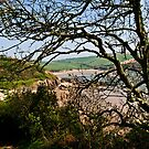 Mothercombe, Erme Estuary. by moor2sea