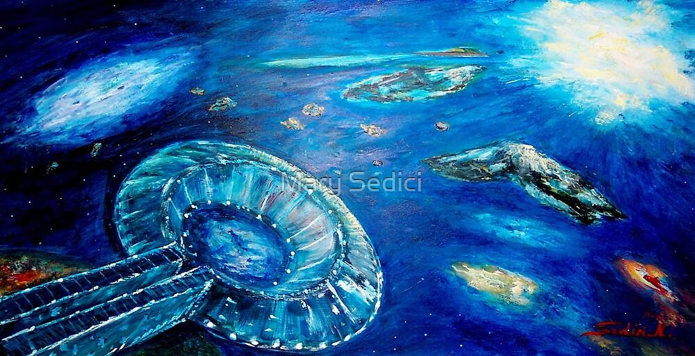 INTO THE BLUE  by Mary Sedici