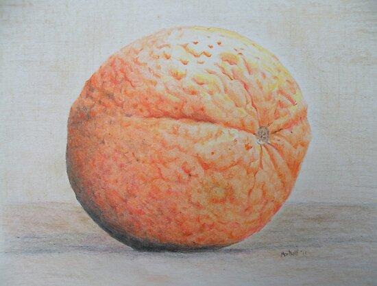 Orange by Dave Martsolf