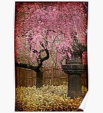 Asian Spring Poster