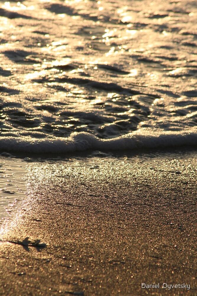 Casey Key, Florida - Sunset on Beach reflection by Daniel  Oyvetsky