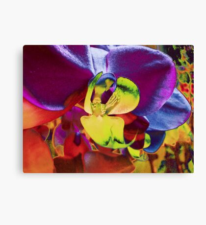 Orchid Art Collection Canvas Print