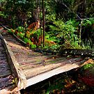Ghost's bridge by su2anne