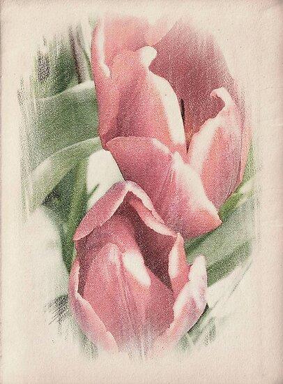 Beau de Fleur ©  by Dawn Becker