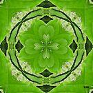 Silk by Diane Johnson-Mosley