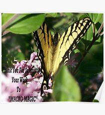 Macro Magic Banner Poster