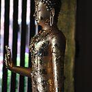 The Golden Buddha. by newcastlepablo