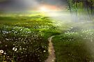 Fantasy Land by Igor Zenin