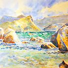 Boulders Beach, Simons Town, South Africa by Gregory Pastoll