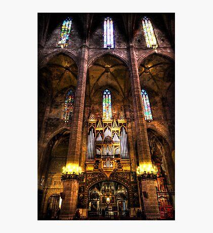 Palma Cathedral Pipe Organ Photographic Print
