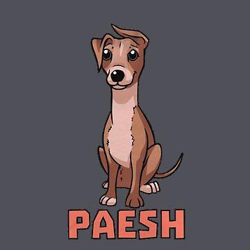 Paesh  by mdoering16