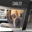 Smile :) by Ciarra Ornelas