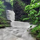 Deckertown Falls by Lori Deiter