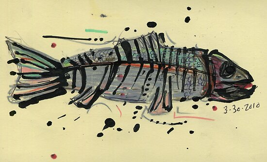 Trout Skeleton by maujean
