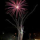 Firework flower by Stecar