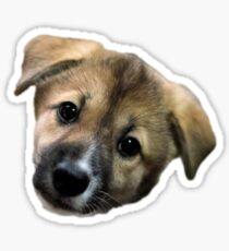 Adorable Puppy Two Sticker
