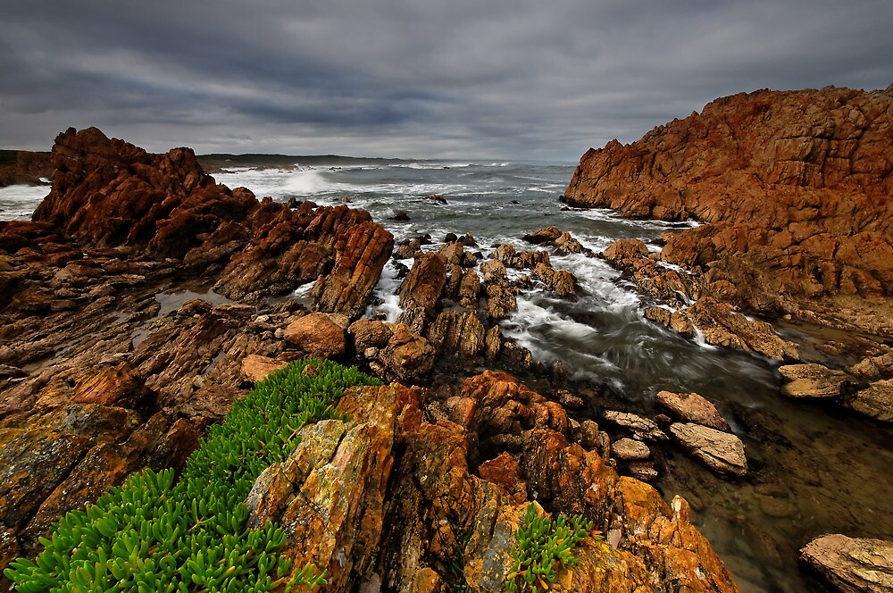 Rough as Guts Tarkine Coast by Robert Mullner