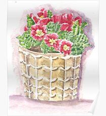 Jar primrose Poster