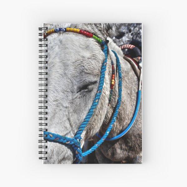 Santorini donkey Spiral Notebook