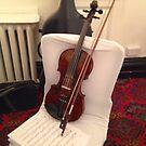 Violin by Robert Steadman